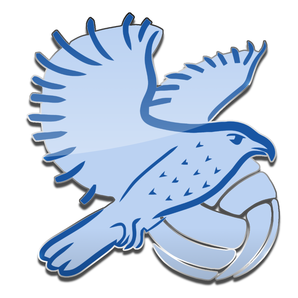 Sokol Volleyball Logo